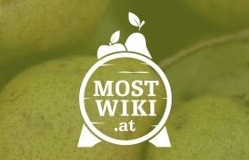mostwiki.at