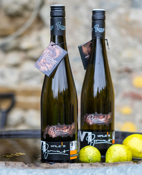 Male′s Pyrus -Birnen Wein im Holzfass gereift, 750ml
